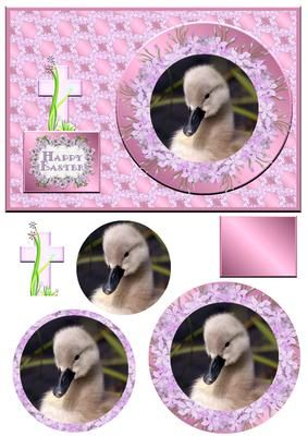 Sweet Baby Duck Qs on Craftsuprint - Add To Basket!