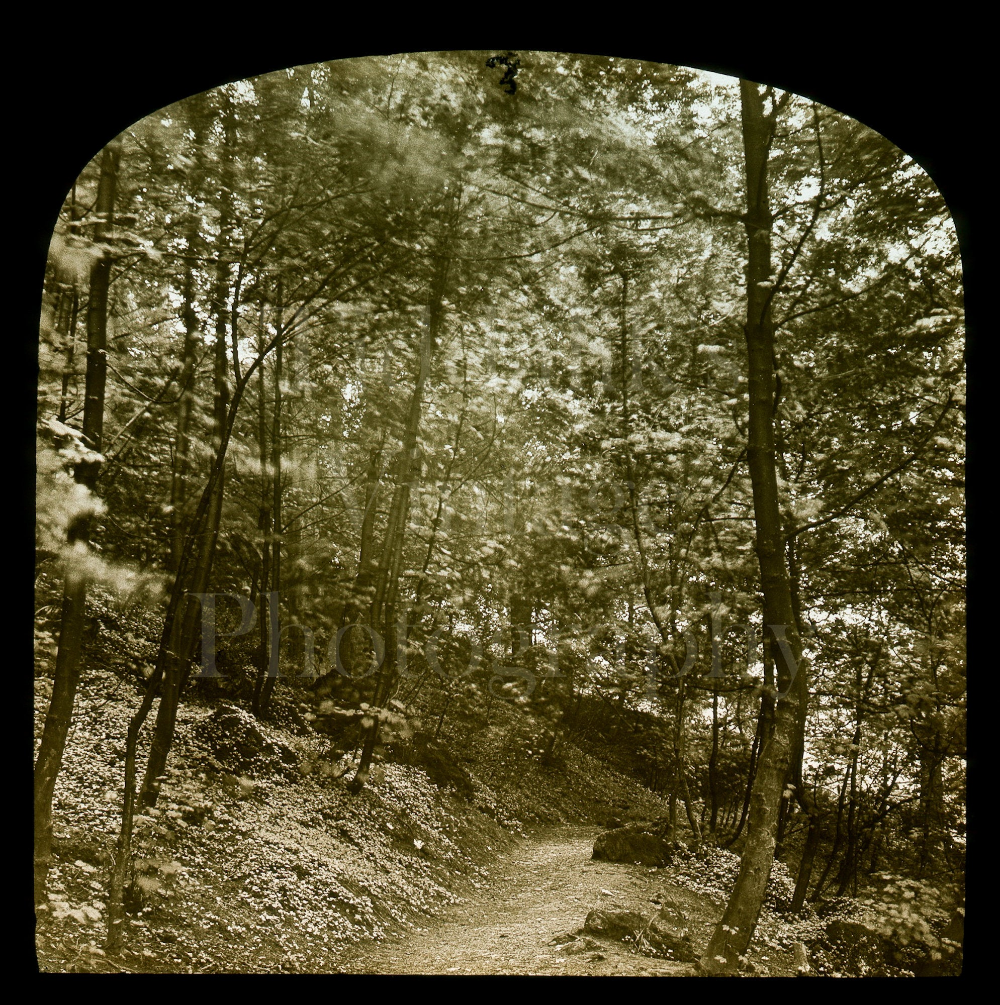 Niagara Falls ~ Vintage Projector Slide ~ Photo Antique Magic Lantern Glass Slide ~ Honeymoon Bridge