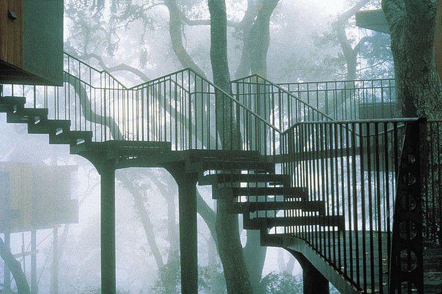 Post Ranch Inn: tree house stair