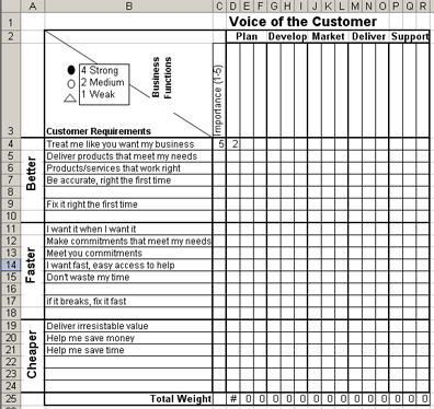 Voice Of The Customer Matrix In Excel Voice Of The Customer