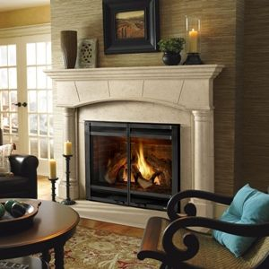 Biltmore Cast Stone Mantel By Heat N Glo Transitional