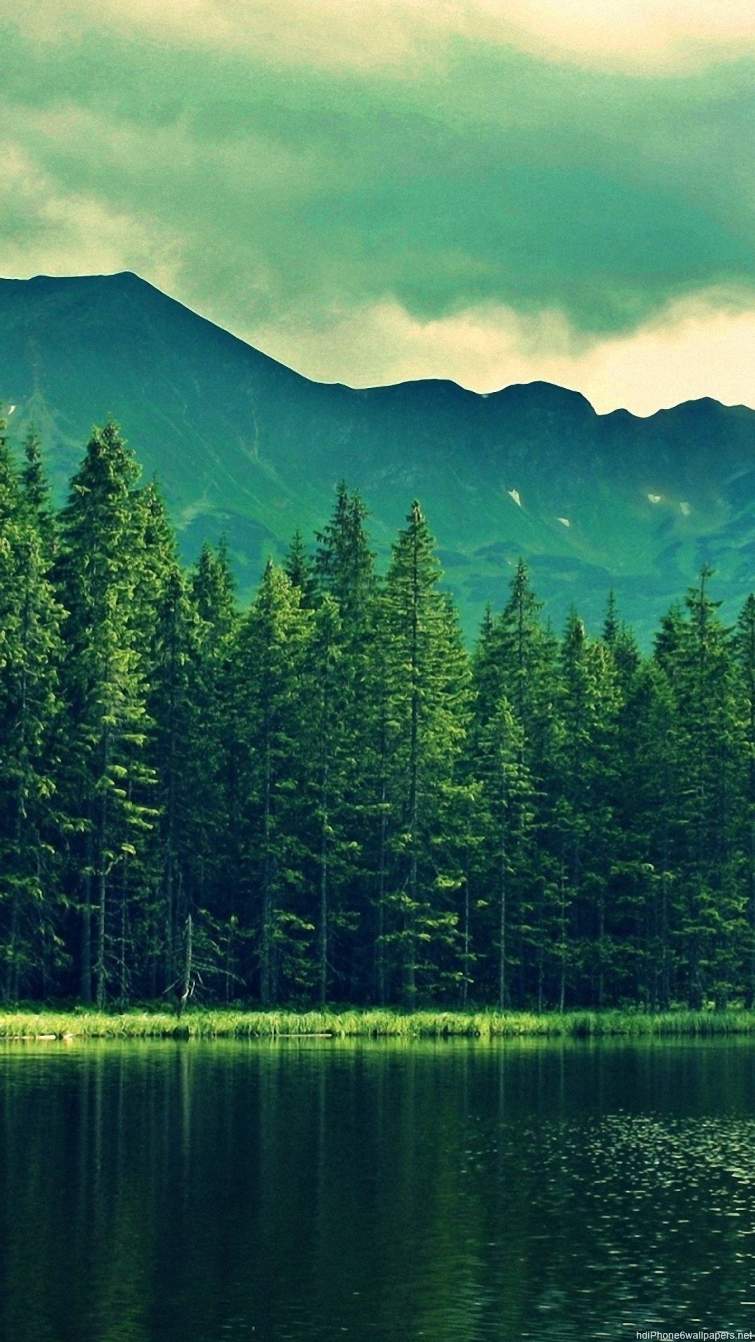 Mountains and trees and lake mountains waterfalls streams - Pine tree wallpaper iphone ...