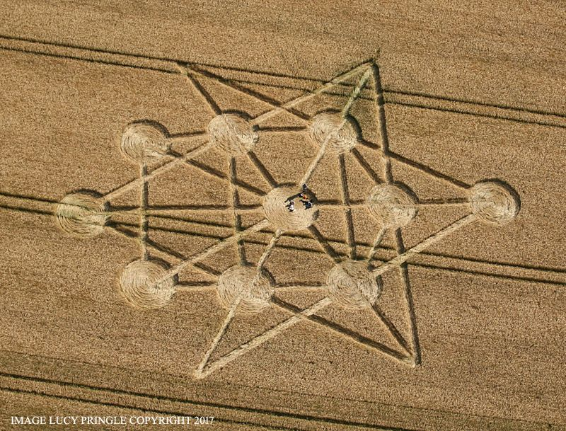 Crop Circle at Target Wood, nr Badbury Rings, Dorset. Reported 16th June 2017