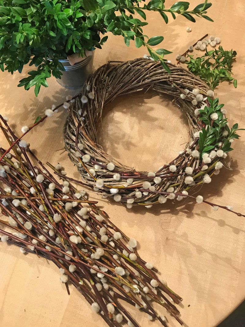 Photo of Spring wreath of catkins and box twigs