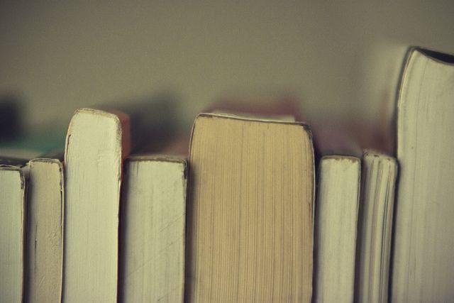 Los libros del 2014 » Wasel Wasel