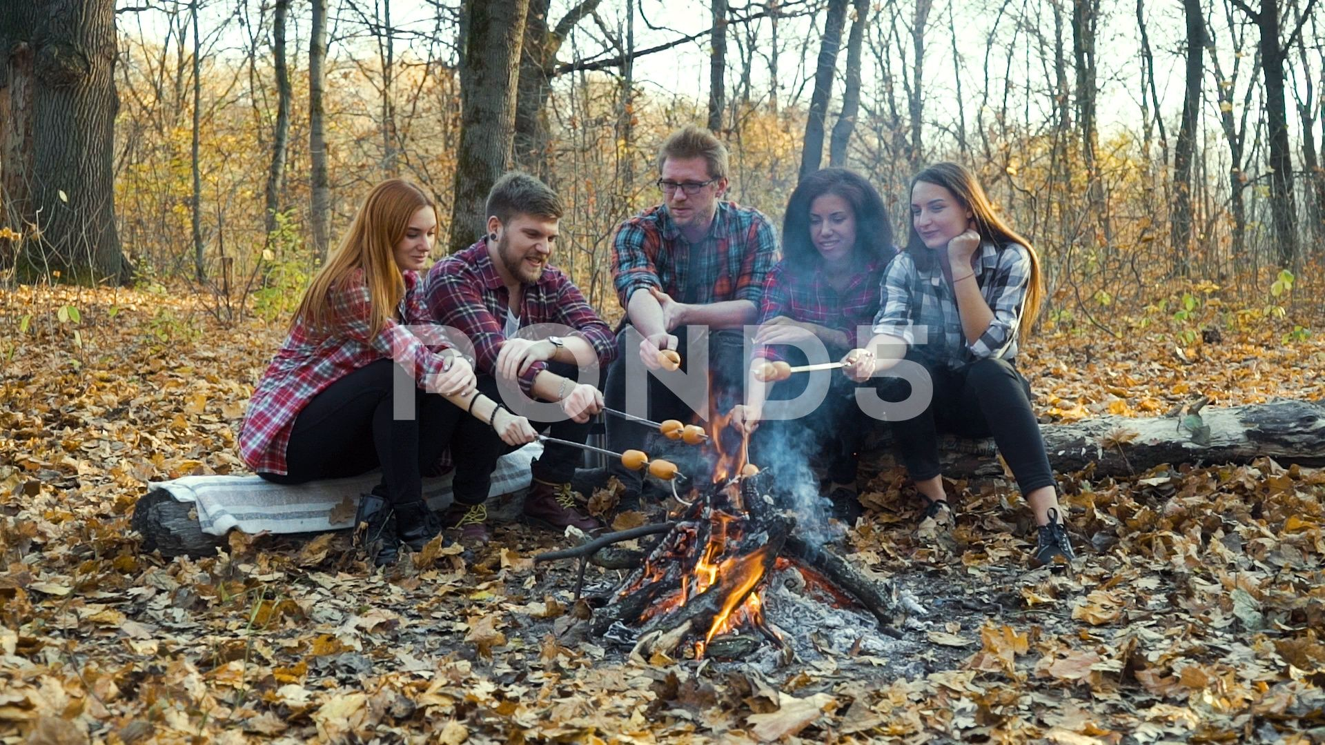 Campers roasting sausages on open fire in autumn forest Stock Footage ,#sausages#open#Campers#roast