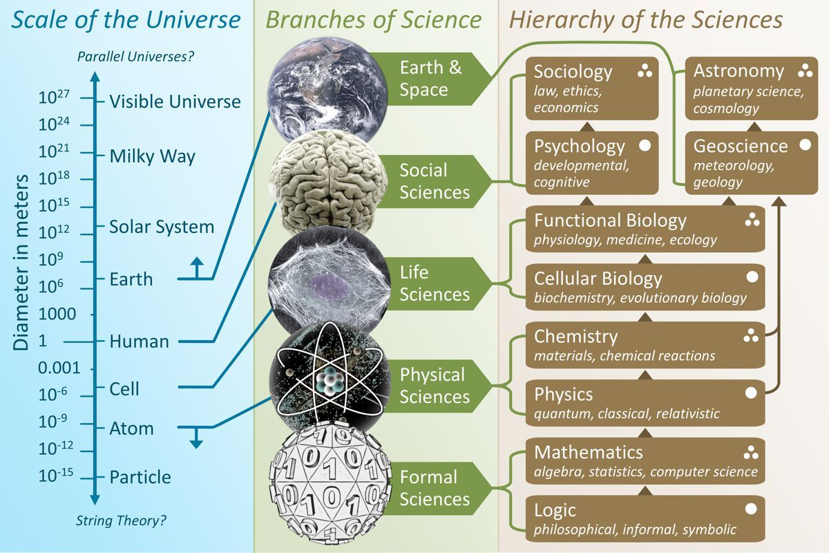 Scientific disciplines and classification | Science, Branches of biology, Systems biology