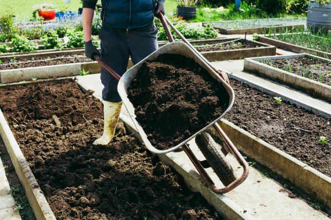 The Best Organic Fertilizers For A Vegetable Garden 400 x 300