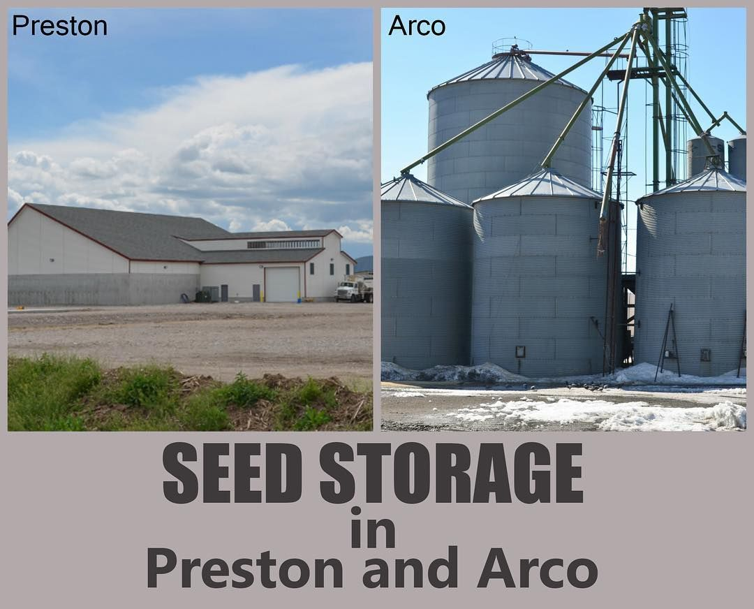 We Offer Seed Storage At Our Facilities In Preston And Arco. Call Us Today!