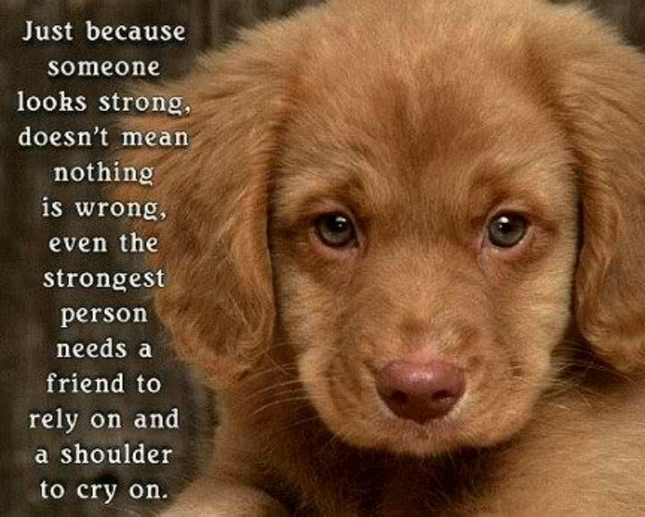 Truth, and a cute puppy!