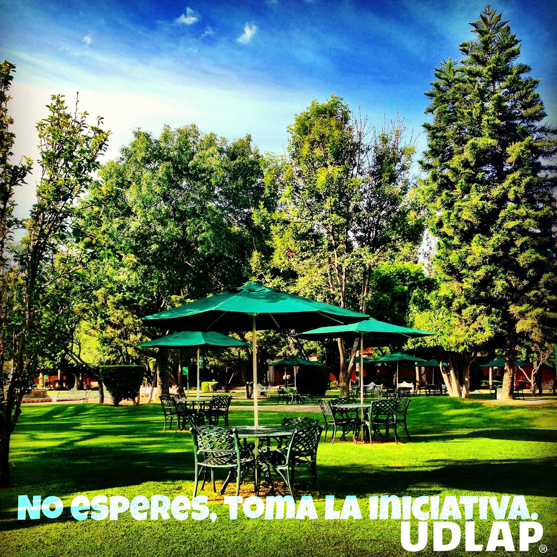 La playita #UDLAP #iniciativa #campus #jardines