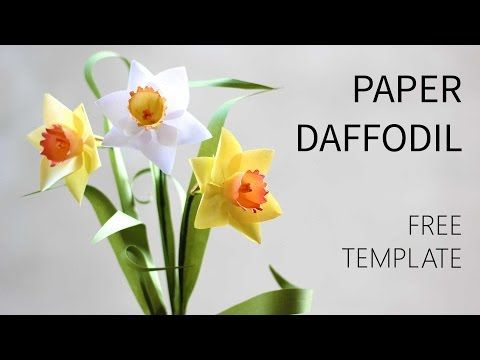 How to make paper daffodil flower out of printer paper free diy daffodil flower from regular printer paper and some simple materials around you its really a great summer project with my free template and tutorial mightylinksfo