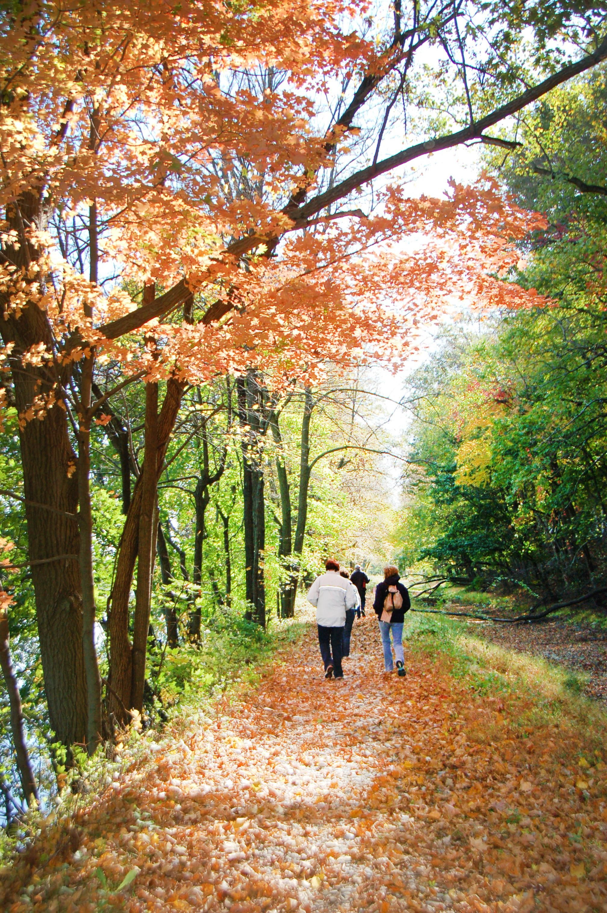 ALL THOSE MILES! Program to celebrate 25 years of walks