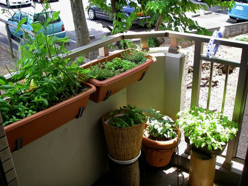 16 Astonishing Apartment Garden Ideas Digital Pictures | Ideas for ...