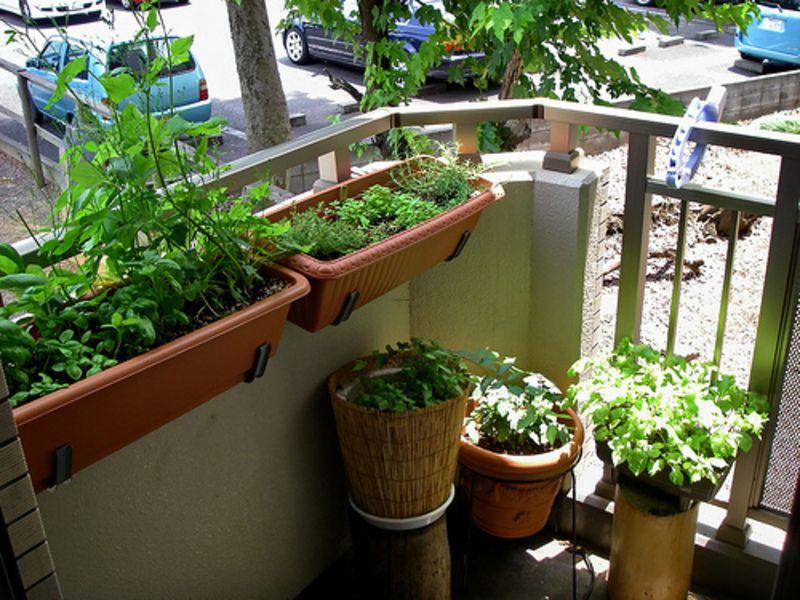 Small Apartment Patio Garden Ideas - TheApartment