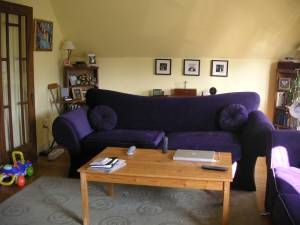 This is listed for FREE on craigslist right now.  If my husband had no say (or didn't care) I think I might re-decorate my whole living room around these (yes there is a love seat too!) funky couches.  Alas, he does care and we can't afford any re-decorating right now :(