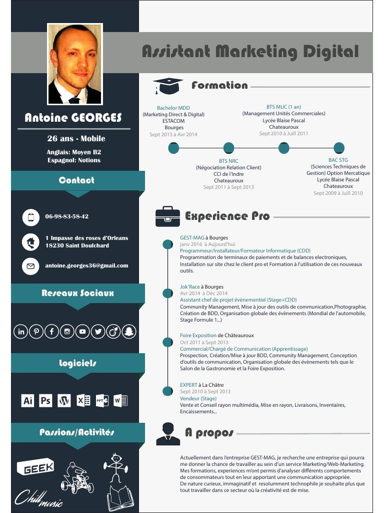Marketing Digital Pdf Cv Digital Modele Cv Cv Gratuit