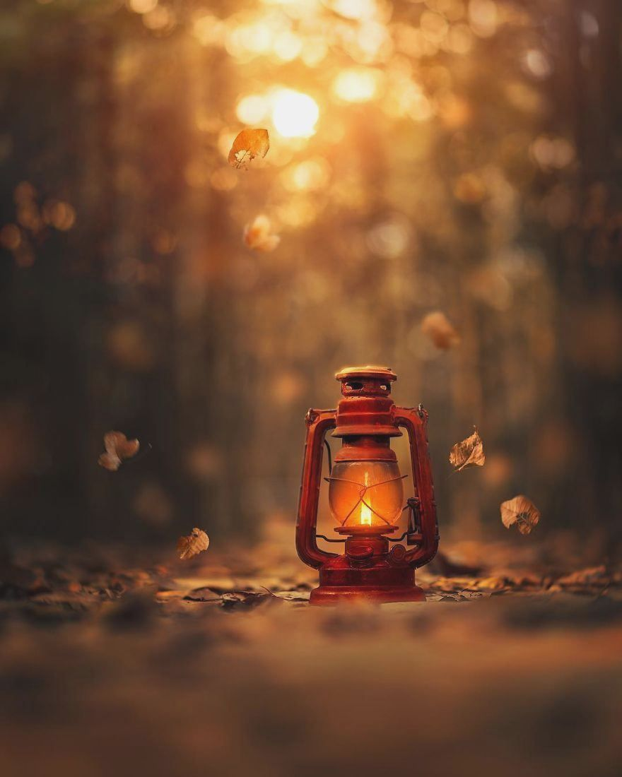 I Create Magical Images With My Old Lantern In 2020 Old Lanterns Autumn Photography Magical Images
