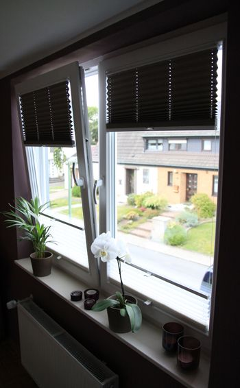 plissee faltstores von fertig montiert am fenster pleated blinds for windows. Black Bedroom Furniture Sets. Home Design Ideas