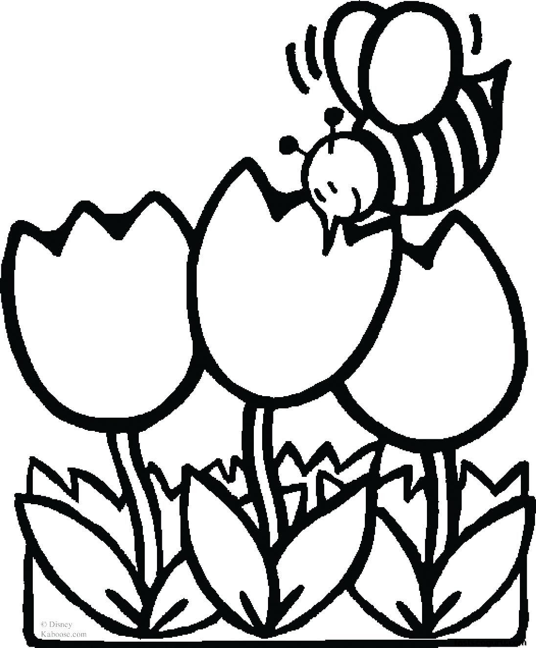 animal print out pictures coloring pages bee - Pictures For Kids To Color