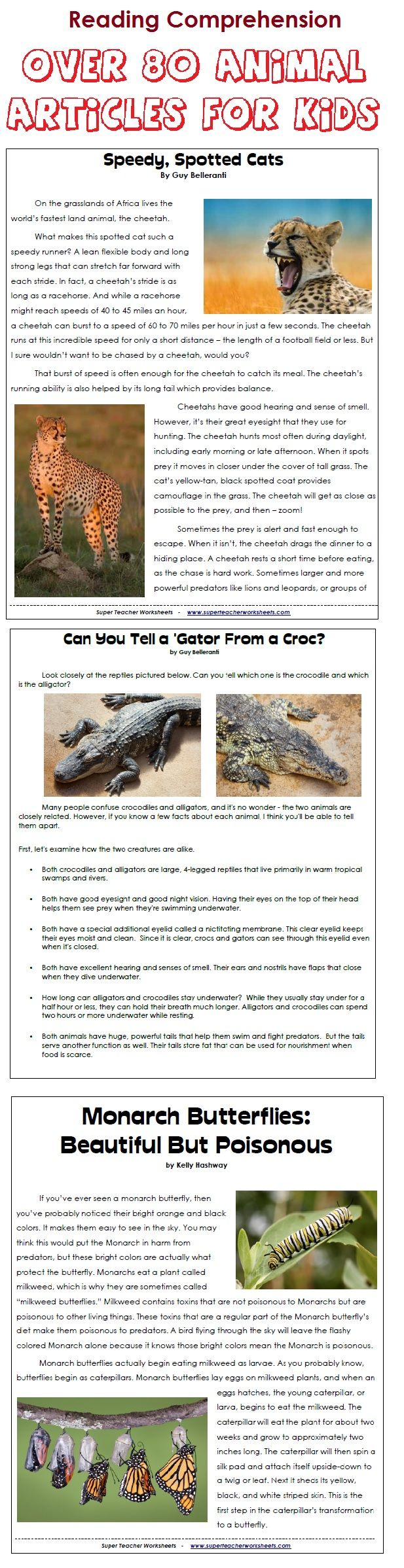 Download 80 printable animal articles with reading comprehension download 80 printable animal articles with reading comprehension questions fandeluxe Choice Image