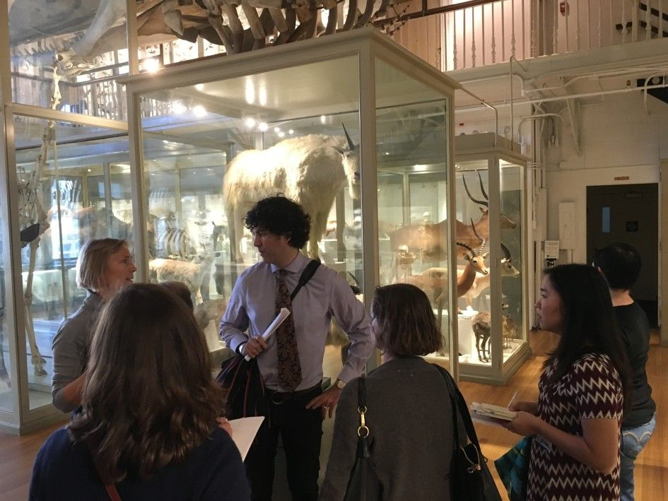 Adam Rozan spoke with us about a new and innovative course that he is teaching in the Museum Studies program at Harvard University's Extension School.