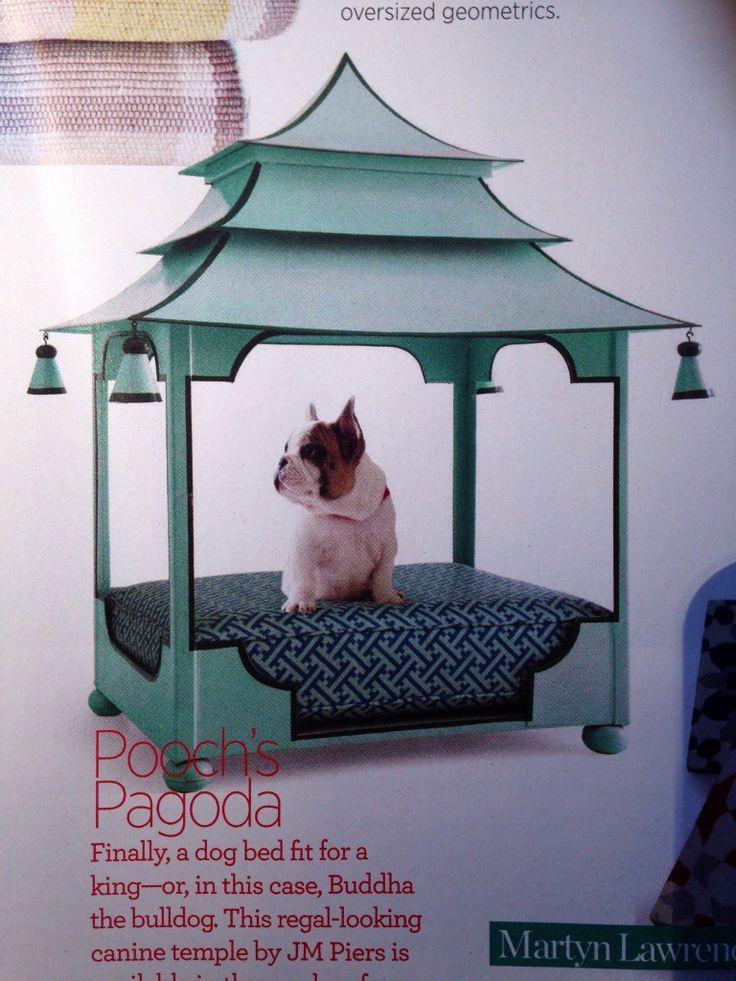 Chinoiserie Chic The Chinoiserie Dog The Bed