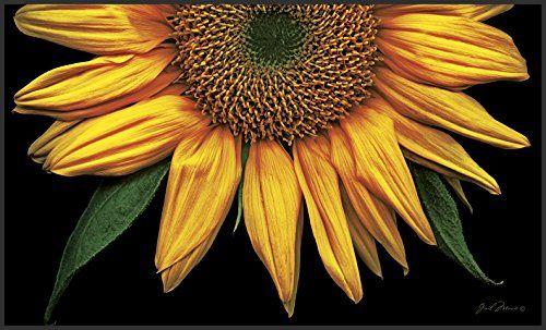 Multicolor Toland Home Garden 800037 Soft Step Designer Mat Standard Sunflowers on Black