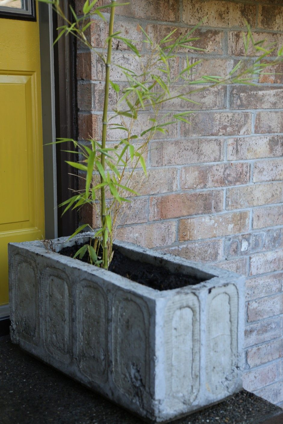 DIY concrete planter. Detailed instructions and molds for