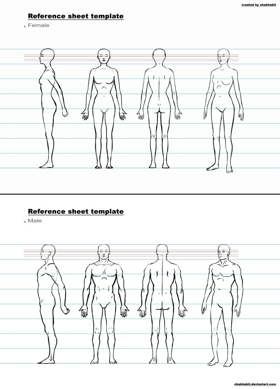 Character Design Sheet Template  Google Search  Anatomy And