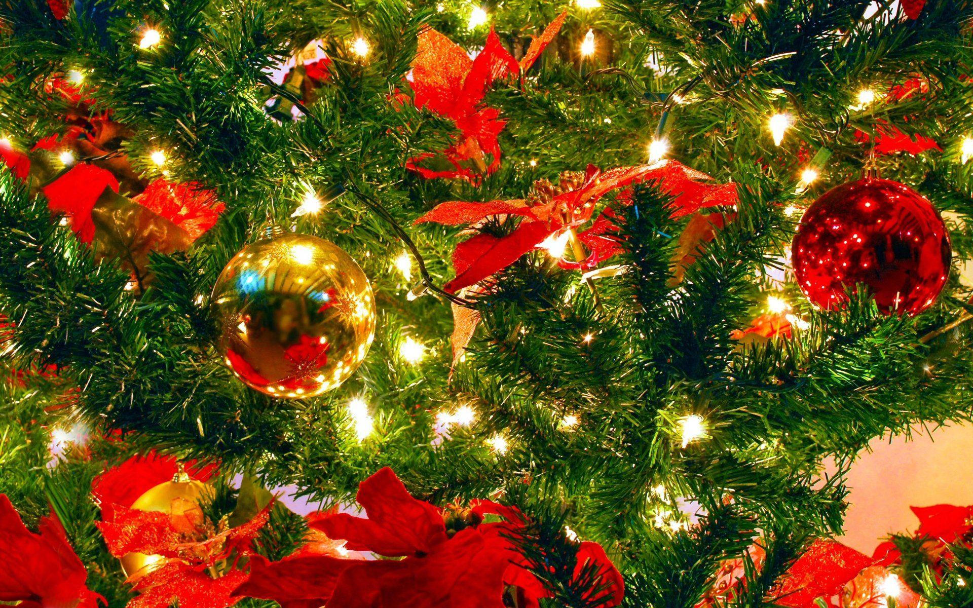 Holiday Christmas Colorful Christmas Ornaments Wallpaper