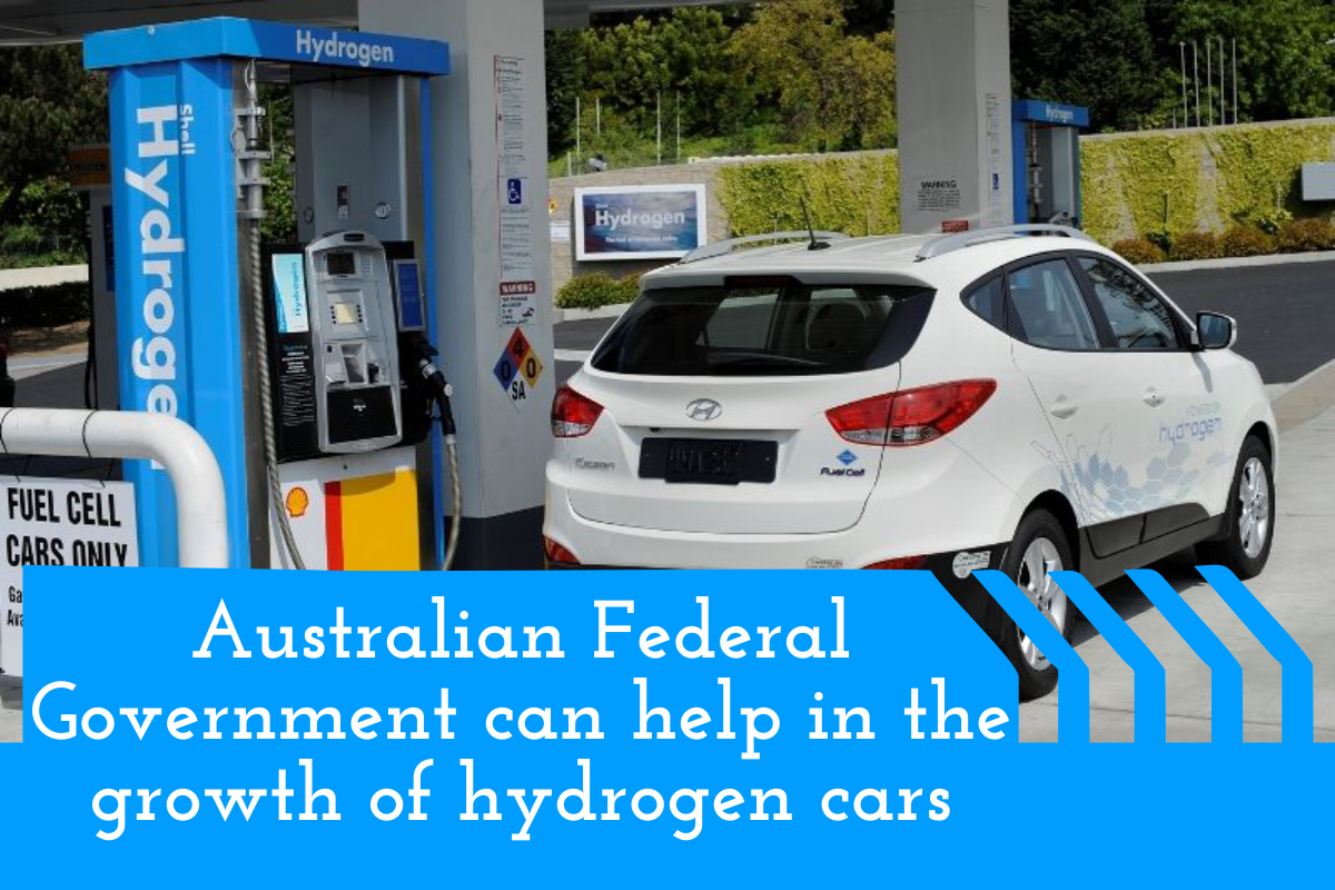 Australian Federal Government can help in the growth of