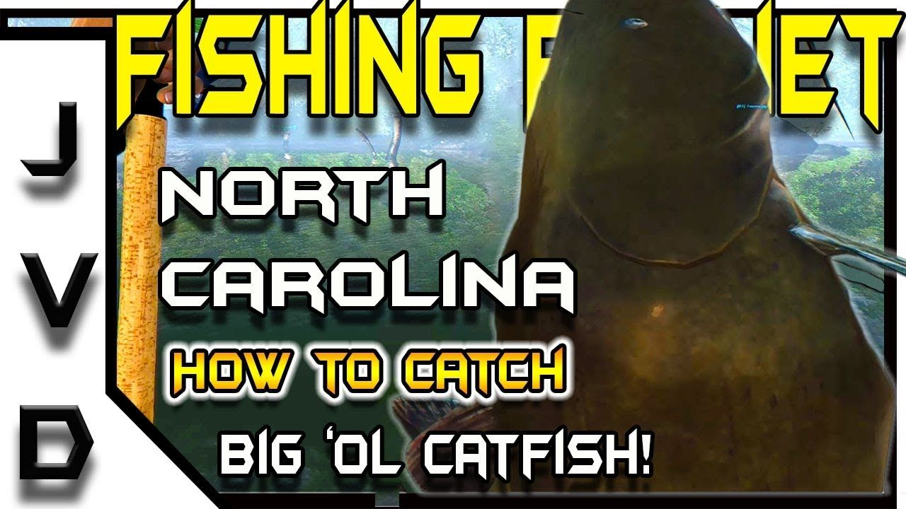 Fishing Planet Tips | How to Catch Catfish | Big 'ol