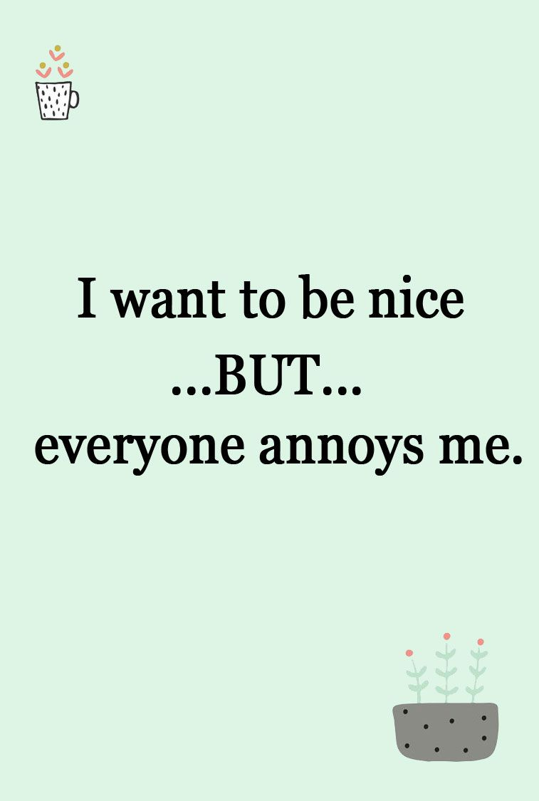 I want to be nice but everyone annoys me