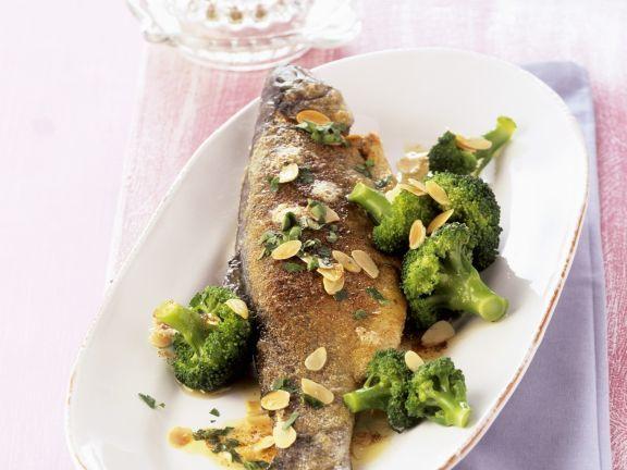 Forelle mit Brokkoligemüse ist ein Rezept mit frischen Zutaten aus der Kategorie Fisch. Probieren Sie dieses und weitere Rezepte von EAT SMARTER!