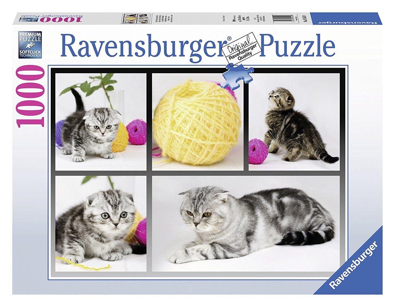 Werbung Ravensburger 19545 Britisch Kurzhaar Katzen 1000