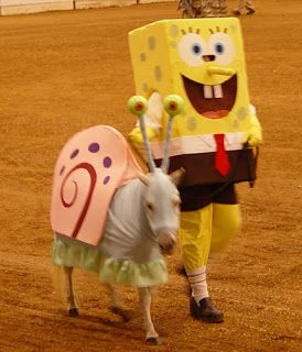 Disfraces para caballos Bob Esponja y Gary  Cartoon Character