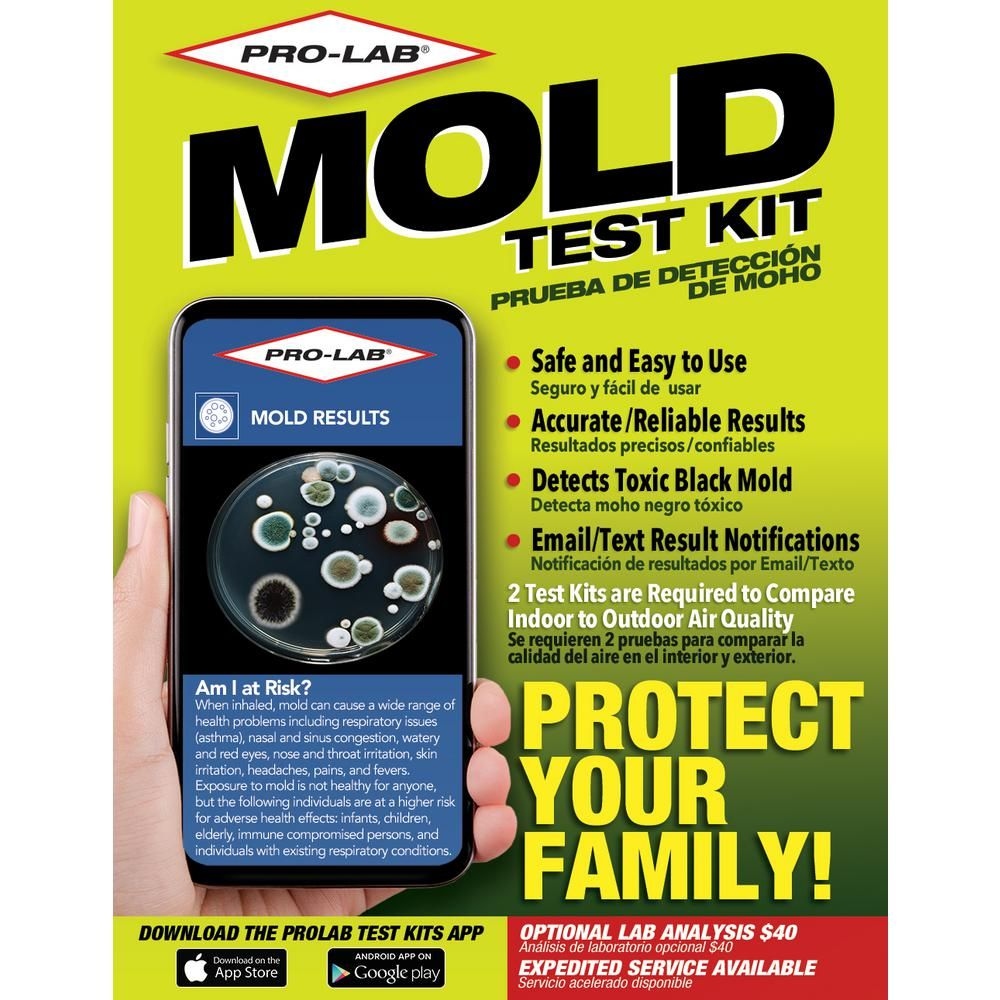 PROLAB Mold Test KitMO109 The Home Depot in 2020 Diy