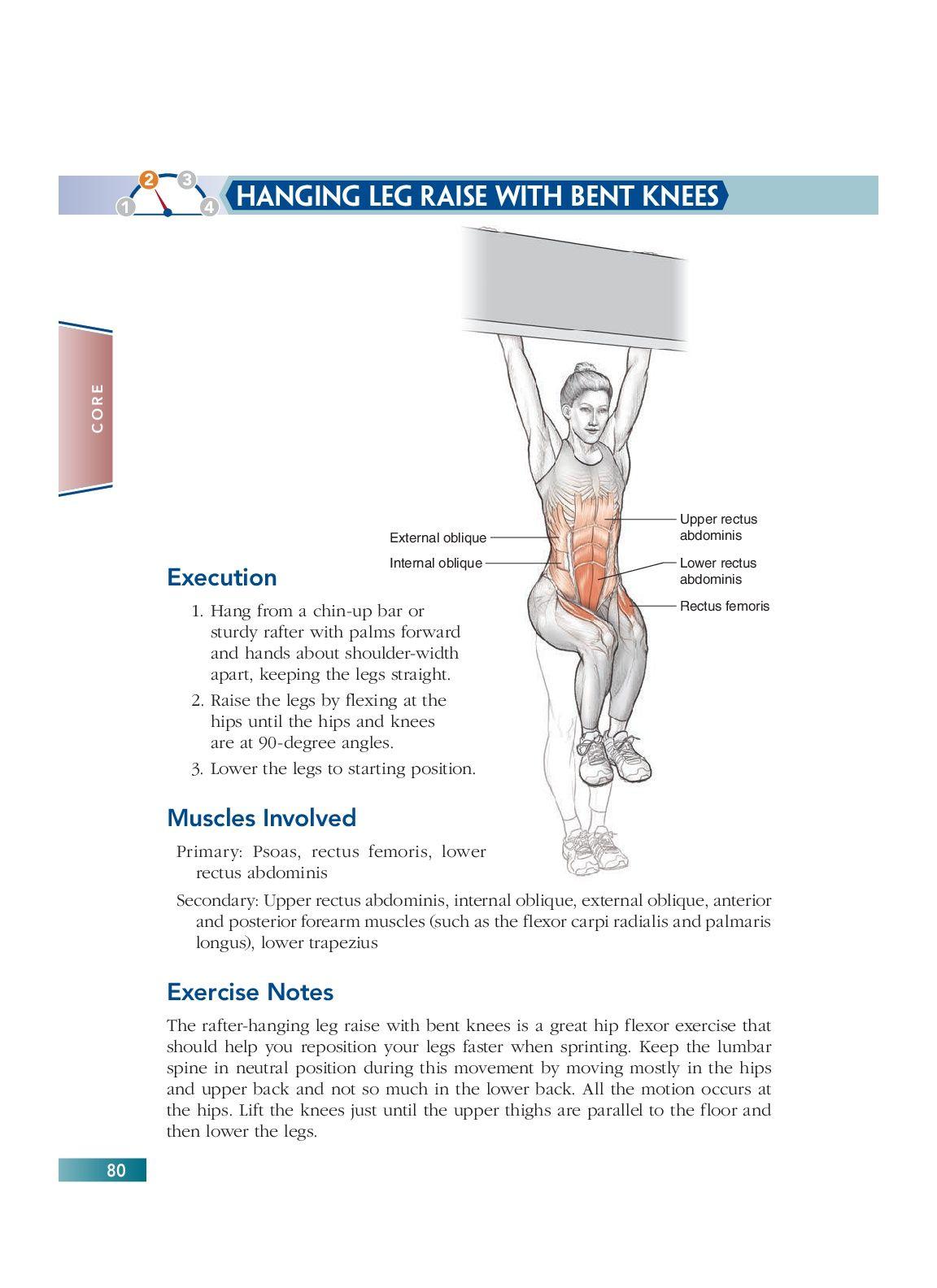 Chapter 5 Core 80 Bodyweight Strength Training Anatomy Pinterest