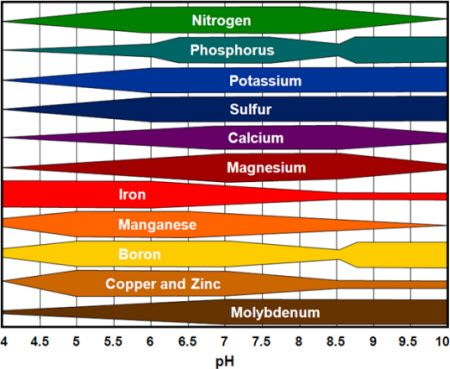 soil ph and nutrient availability chart: Relative availability of crop nutrients by soil ph gardens