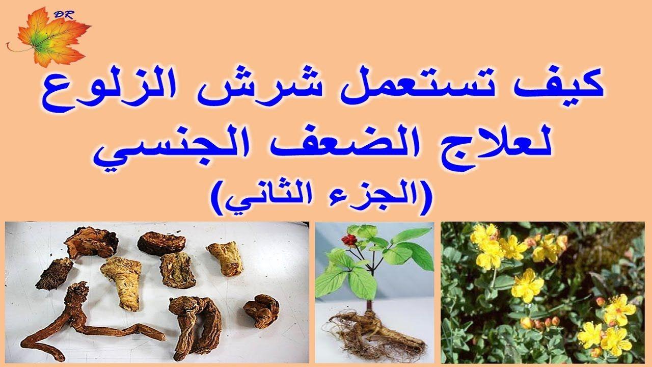 e84b25725 كيفية استعمال شرش الزلوع لعلاج الضعف الجنسي | الأعشاب وفوائدها | Allah