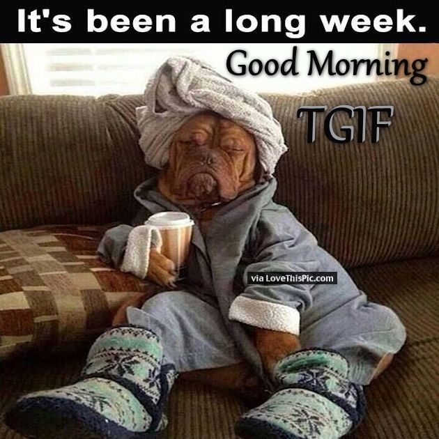 Funny Good Friday Meme : Good morning its been a long week tgif gifs pinterest
