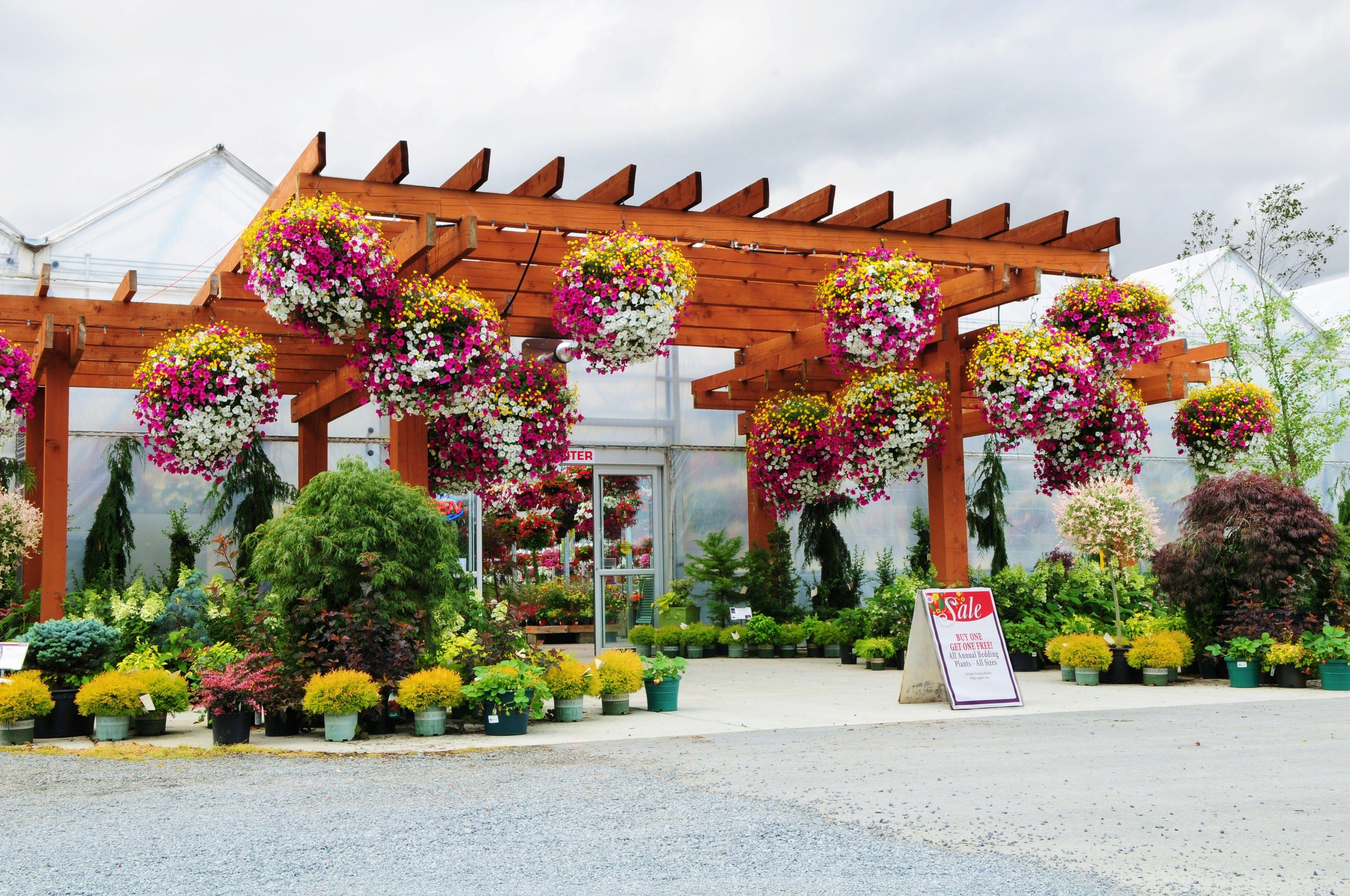 Garden Center Entry Google Search With Images Garden Center
