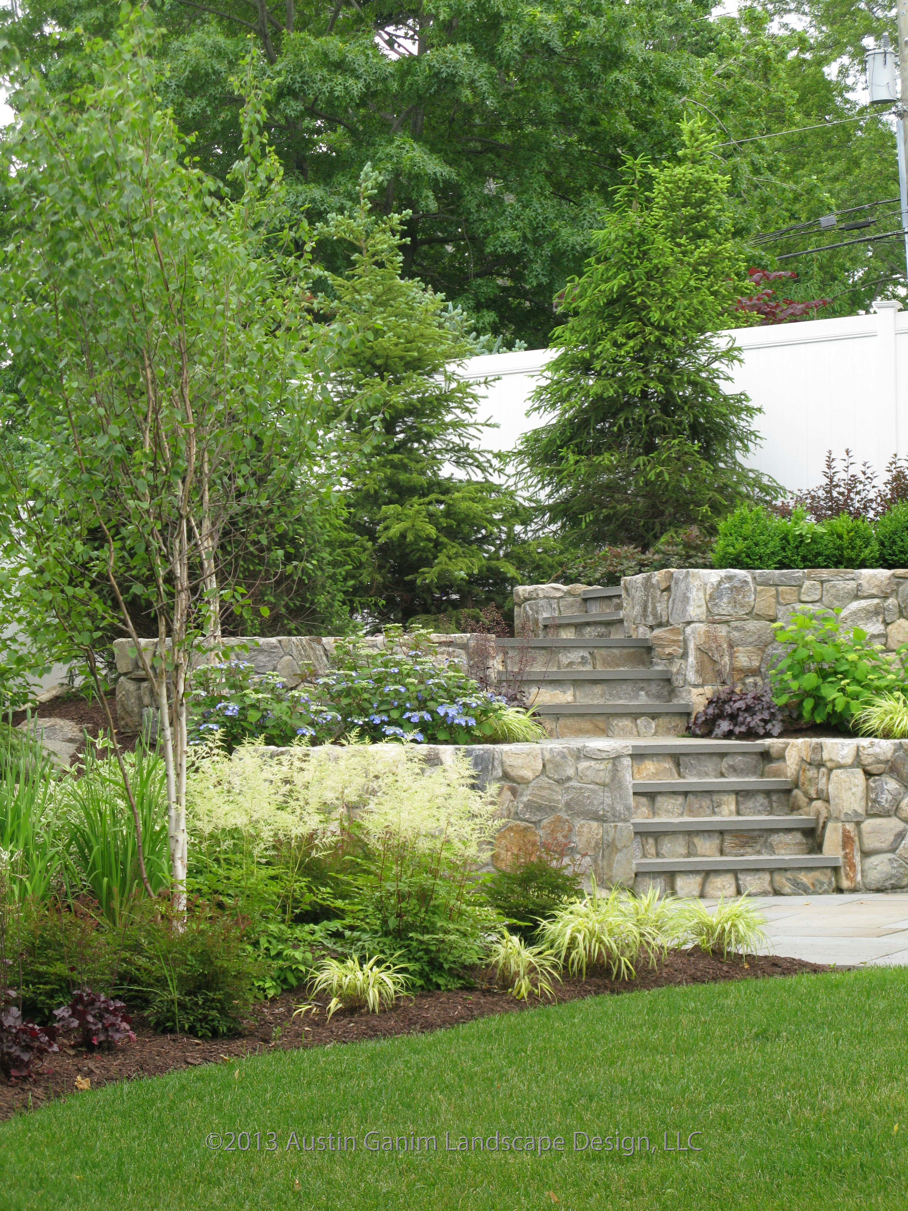 Pin By Austin Ganim Landscape Design On Beach Area Garden With A Touch Of Woodland Elements Birch Trees Landscaping Birch Trees Garden Steep Gardens