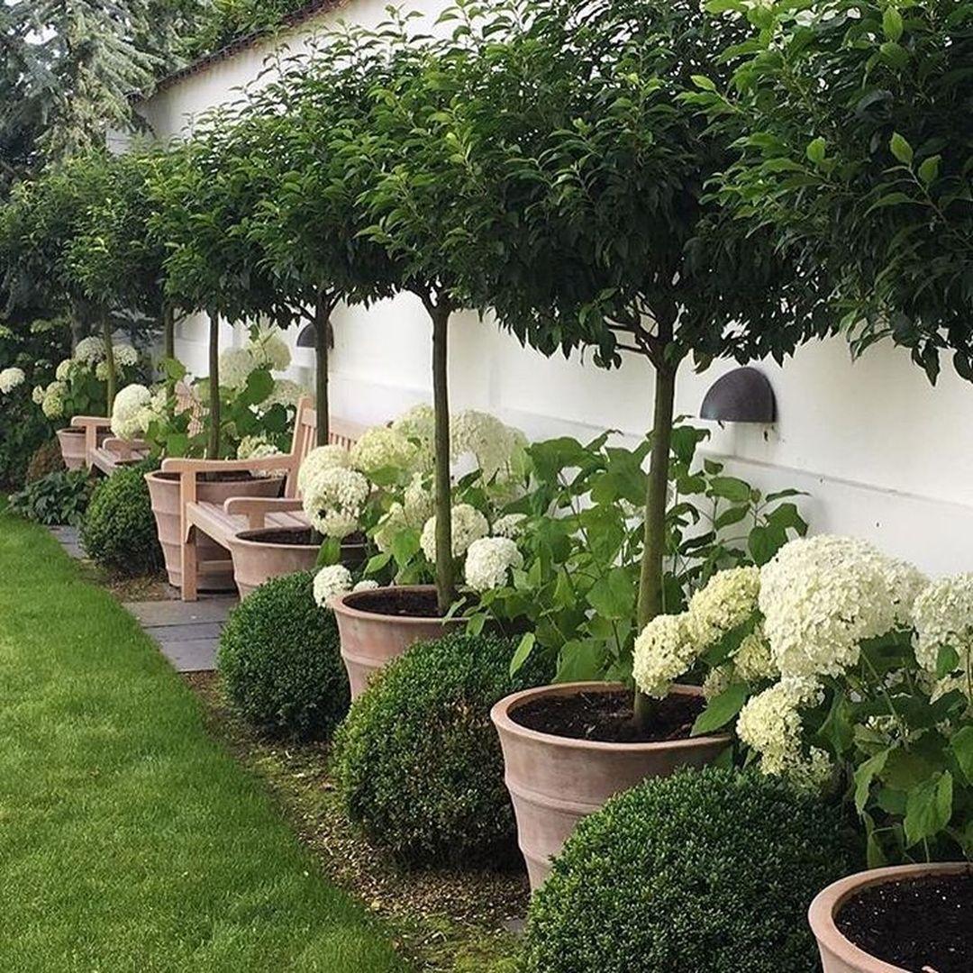 Symmetrie Herhaling Rust Voor balkon terras pattio terrace roof top garden outdoor room garden design