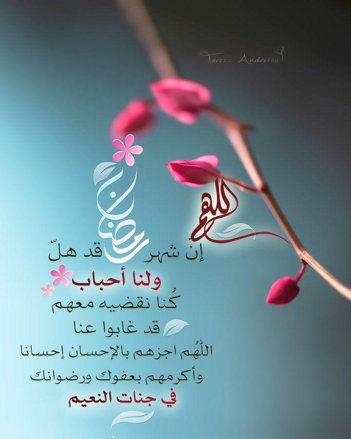 اجمل الصور رمضان الكريم اجمل الصور بمناسبة حلول شهر رمضان Zina Blog Ramadan Romantic Love Quotes Neon Signs