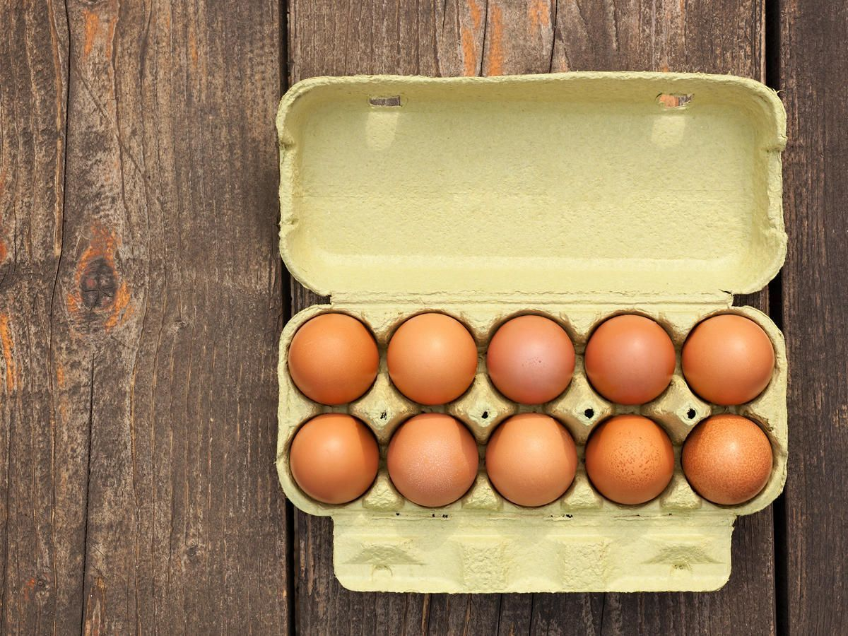 The Best Possible Way to Use Old Eggs #boiledeggnutrition Best boiled egg technique | The best way to use old eggs - Other than light vandalism #boiledeggnutrition The Best Possible Way to Use Old Eggs #boiledeggnutrition Best boiled egg technique | The best way to use old eggs - Other than light vandalism #boiledeggnutrition The Best Possible Way to Use Old Eggs #boiledeggnutrition Best boiled egg technique | The best way to use old eggs - Other than light vandalism #boiledeggnutrition The Best #boiledeggnutrition
