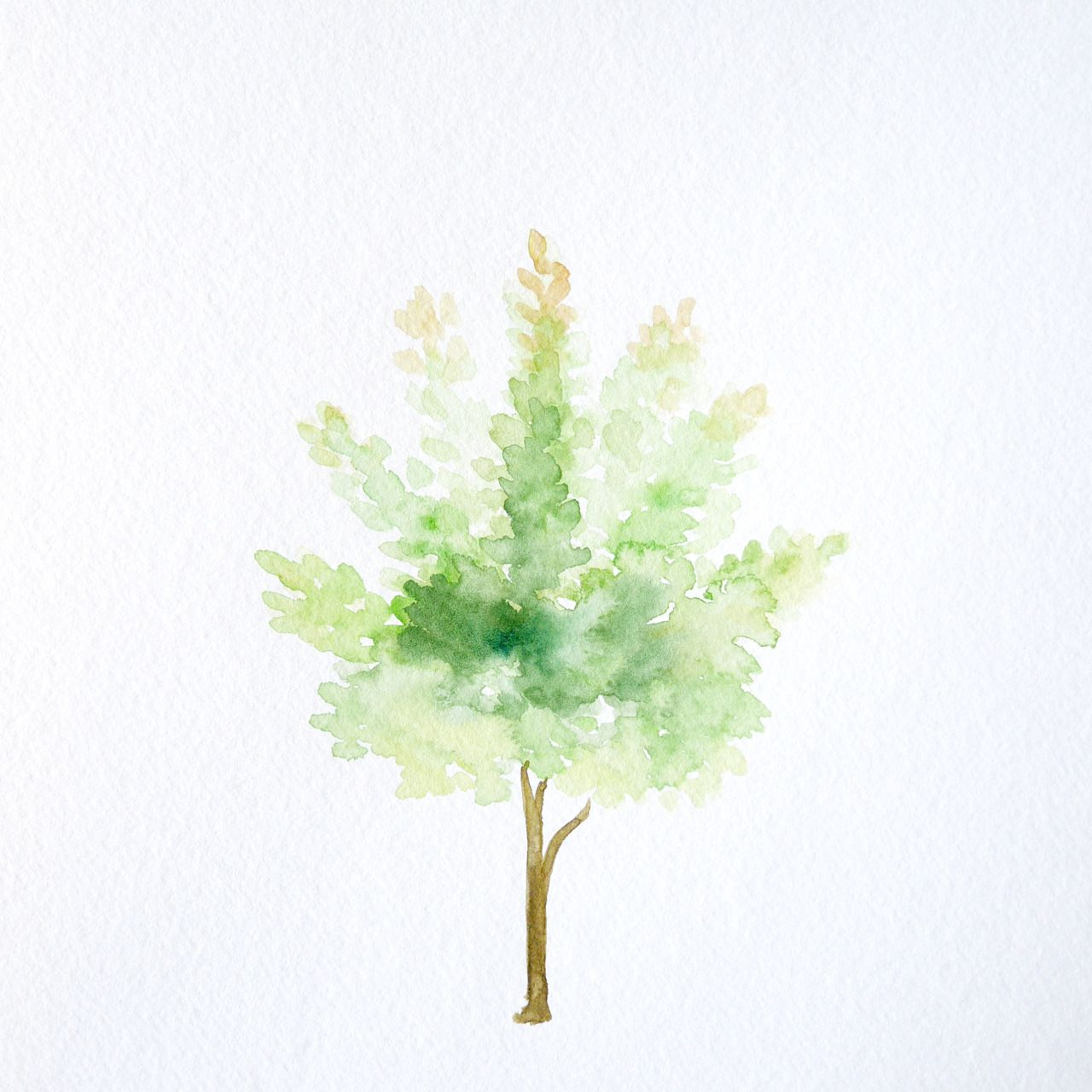 100 Days of Watercolor Trees. Day 47. Green. | 100 Watercolor Trees ...
