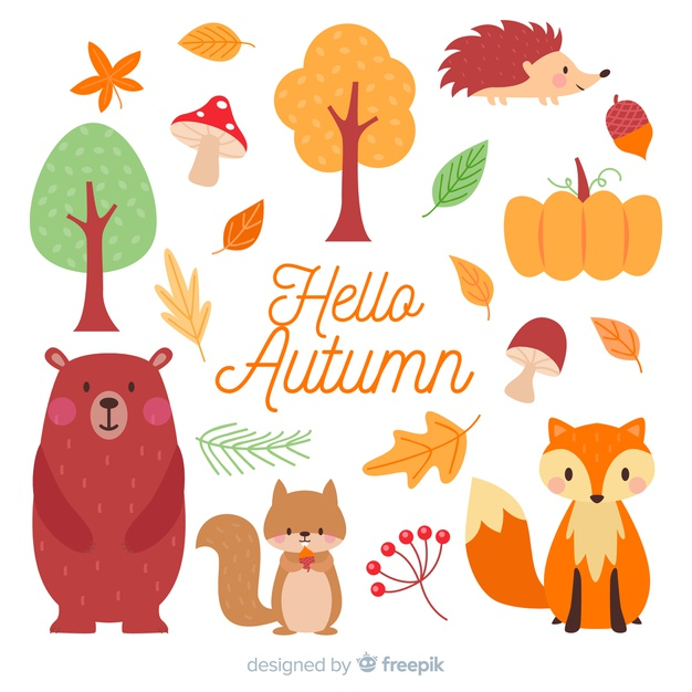 Flat autumn forest animal collection Vector Free