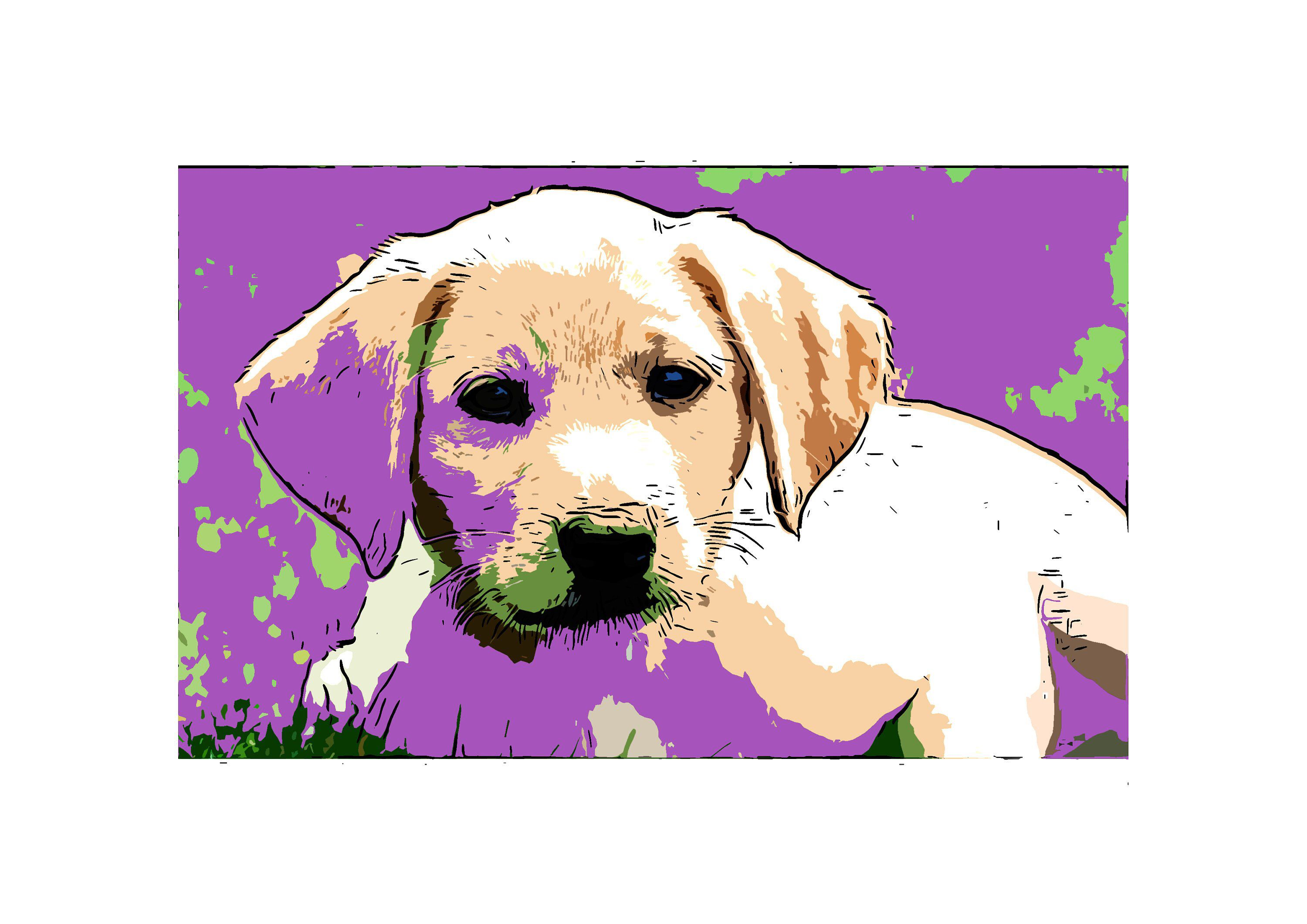 Cute Puppy Art Graphic Download Art Budget Art Purple Background Designed For Letter And A4 Paper Budget Budget Art Dog Art Digital Graphic Design